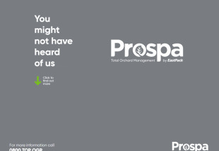 Prospa by Eastpack