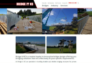 Bridge It NZ